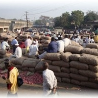 Agriculture Produce Market Committee (APMC), Pune Maharashtra