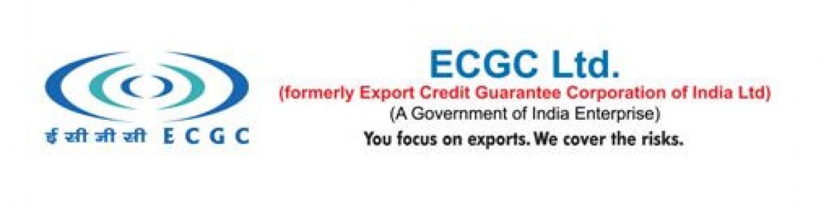 function of credit guarantee corporation