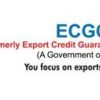 Export Credit Guarantee Corporation of India Ltd. ( ECGC )